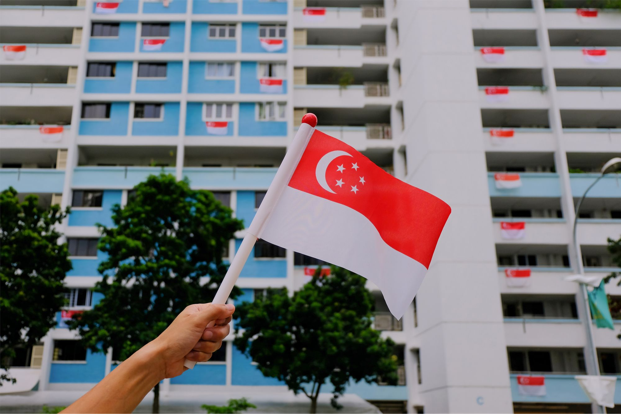 National Day 2020: Things to do over the long weekend