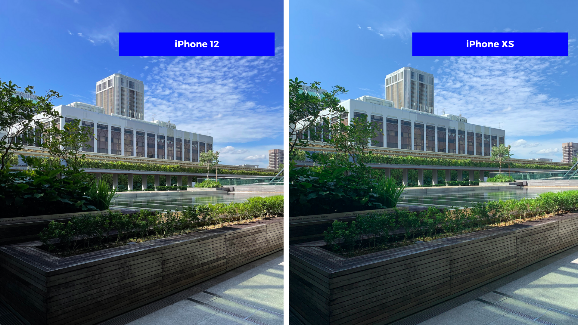 Is the iPhone 12 camera really that great? Here's what we found